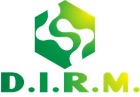 DIRM Workshop