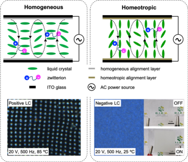 Electroconvection in Zwitterion‐Doped Nematic Liquid Crystals and Application as Smart Windows